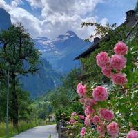 مسافرت و مکانهای طبیعت